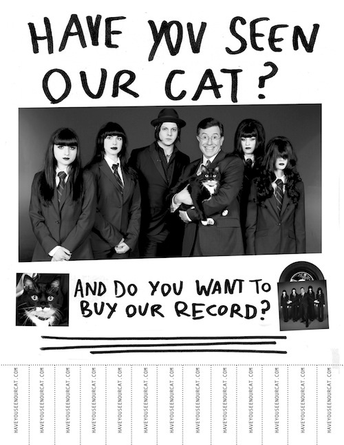 haveyouseenourcat.jpg
