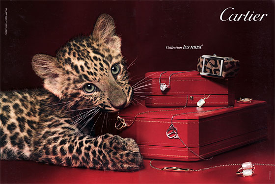 "Isn't it cute when the <a hre=""http://nymag.com/daily/fashion/2009/10/cats_are_in.html"">on-trend animal</a> eats your Cartier?"