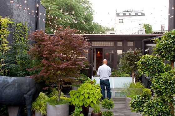 """The entire roof garden is a container garden,"" says David, ""with vine-leading wire installed in strategic spots. Many of the items come back year after year, but the sensitive elements come inside the porch during the coldest months."" His garden contains Japanese maple, coleus, asparagus, bamboo, Diablo Ninebark, smoke bush, and more."