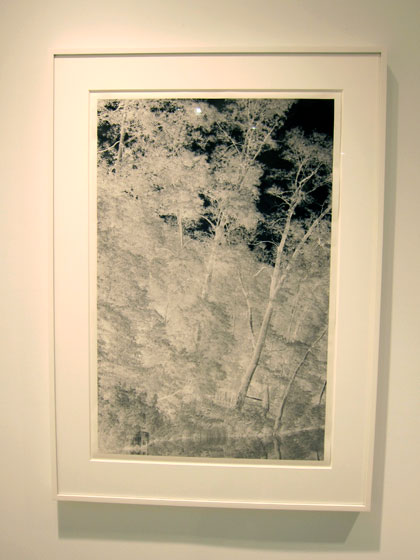 Archival pigment print on Japanese paper.