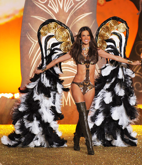 Oh, now how many of Roberto Cavalli's rare zebra-peacock hybrid zoo creatures have to die for one woman to get her wings?
