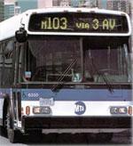 20061024bus_sm.jpg