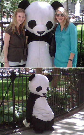 We were always pleased for the Panda when someone sent us photos of him getting to hug pretty girls. Here he is with Katie Waters and Jessica Miller, who work at Esprit downtown. As you can see, while they are there his spirits seemed brighter. But once they left he completely crumpled.