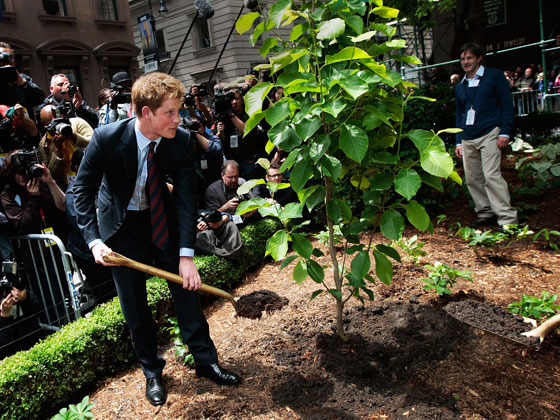 Helping complete the British Memorial Garden to 9/11 victims from his homeland, Prince Harry picked up a shovel ...
