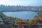 Man Brings Daydream to Life, Jumps Into Central Park Reservoir