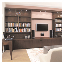 Incroyable Manhattan Cabinetryu0027s Two New York City Showrooms Have An Extraordinary  Selection Of Plasma TV Wall Units And Murphy Beds.